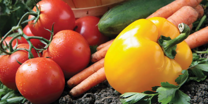 Masterblend for vegetables and tomatoes