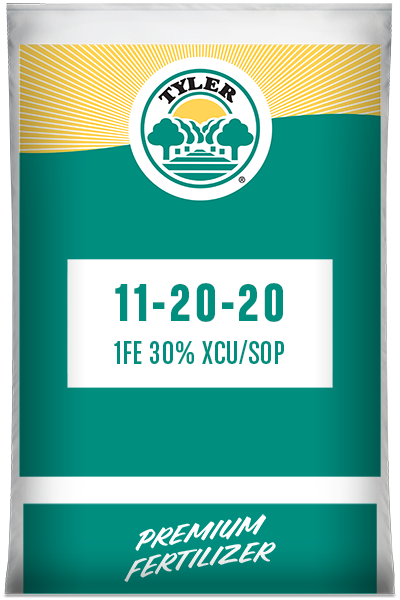 11-20-20 1Fe 30% XCU/sop