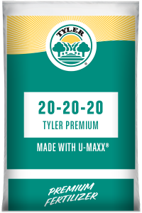 20-20-20 Tyler Premium with UMAXX